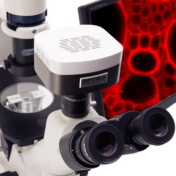 Микроскопы инвертированные серии XDS Optika (Италия)