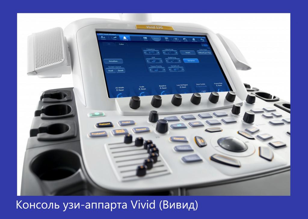 Vivid E90-2.jpg